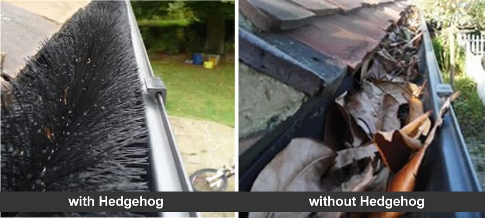 Protect gutters with a hedgehog
